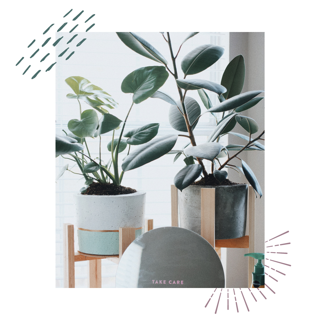 plants on plant stands and a grey chair that says take care